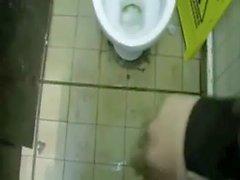 Cruising-toilet