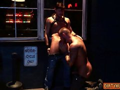 bears glad kuk gay homofile gayvänligt