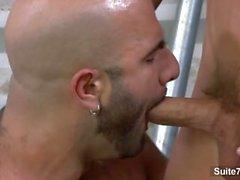 suite703 appartamento - 703 alex - slater alito -milan gay