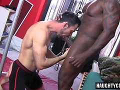 blowjob gay gays gay hunks gay omosessuali interraziale uomo gay