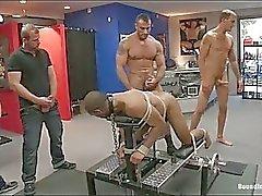 slavernij homo gay bdsm homp