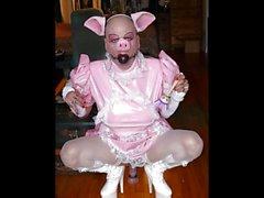 Sexy Gentleman presents: Bruno the Pig