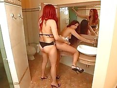 Titty tranny and chick fucking in toilet