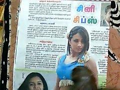 Gooey Cum Tribute to Indian Actress Tamil Actress Trisha