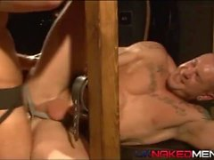 Muscle Stud bound and fucked