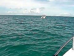 biquíni barco foder