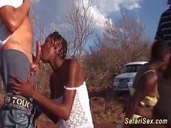 bambino nero ebano
