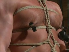 Hairy Muscle Stud Taken Against His Will and Edged - Scene 1