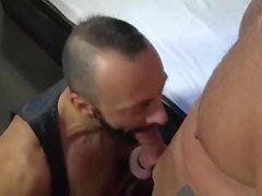 homo ilman satulaa isä