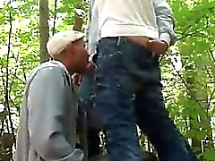 Cock Sucking In The Forest