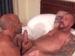 homo miesten gay porn ilman satulaa daddies