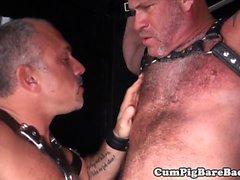 bareback gay björnarna bög homofile bög