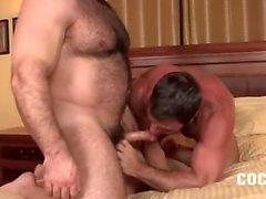 homosexuell homosexuell paar reifen ohne sattel muskulös