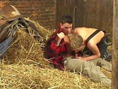 fattoria ragazzi che si baciano hunk more bionda francese bacia la mano della lingua strappi lavoro