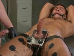 de connor maguire do seth santoro bdsm