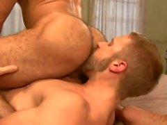 homosexuell bären blowjobs daddies
