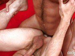 homosexuell homosexuell paar oralsex