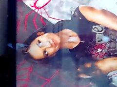 WWE AJ Lee Tribute 2