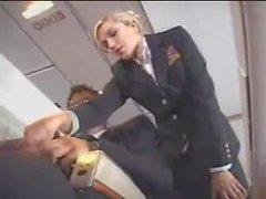 стюардесса мастурбирует самолет
