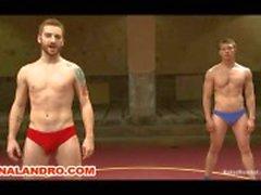 bestrijden het worstelen nudefight homo anaal