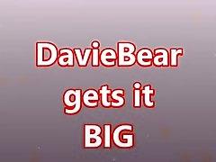 DavieBear take it BIG