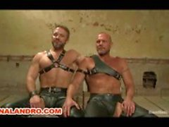 bdsm homo slavernij ketens spanking