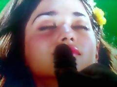 Cum Tribute to Tamanna #4 Try Not to Cum Challenge