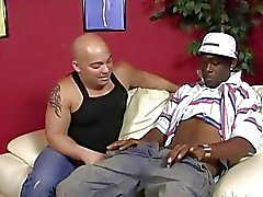 stora svarta dick gay gay mellan kön