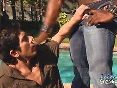 blowjob gay daddies gay gays gay interracial homojen