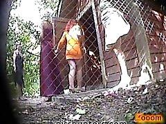 escondida câmera - higiénico mijo webcam