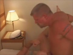 homossexual ursos papais viagem