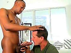 big cocks homosexuell homosexuell blowjob homosexuell homosexuell