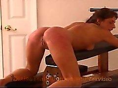 dixiestrailerpark cul -fuck orgasme squirting