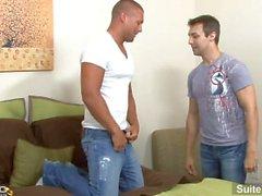 suite703 suite - 703 homo gay - kumppanuus