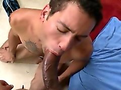 Free porn movieture sissy gay Big fuck-stick gay sex