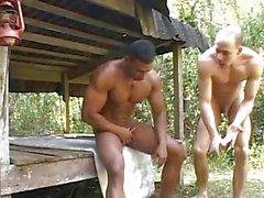 bullig beefy vati arschfick homosexuell homosexuell muskel