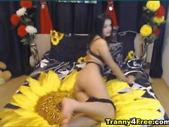 Pretty Busty Ass and Voluptous Shemale Dances on Cam