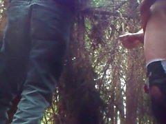 cruicing en el bosque