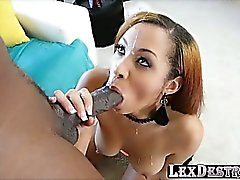 Gorgeous babe Serena Ali sucks Lexington big black cock