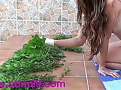 Nettles Ass Fisting Anal Insertion Stinging Nettles with Speculum