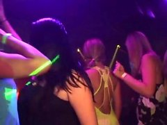 Lovely babes dance at the party