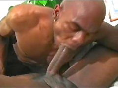 ebony gay rooftop sex