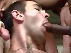 blowjob gay facial gay homojen gay facial gay